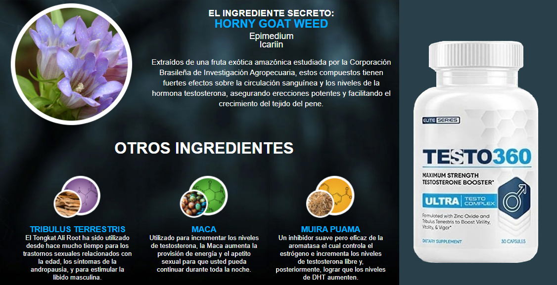 testo 360 ingredientes